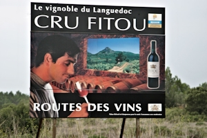 Fitou appellation, Languedoc wine and food pairing tips